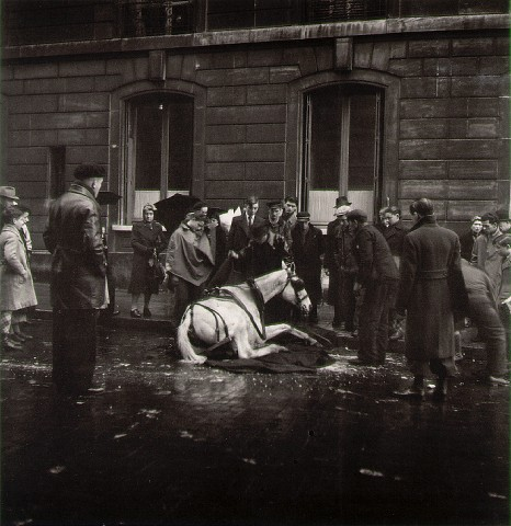 Fallen Horse (1942)
